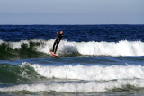 Riding the wave, surfing in La Jolla
