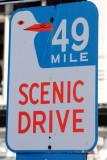 49 mile scenic drive, San Francisco