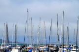 Boats, Fishwerman's wharf, San Francisco