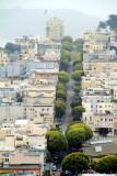 Tree Lined street, San Francisco