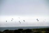 Kite surfers, San Francisco