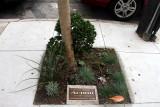 A memorial to a sneeze, San Francisco