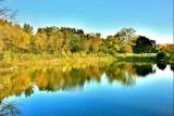 Crain's Landing, Lincolnshire, IL - Fall Colors