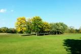 Crain's Landing, Lincolnshire, IL - Fall 2012