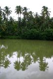 Backwaters of Kerala, Melarkode