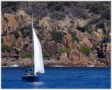 Sailing on Port Stephens