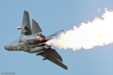 RAAF F-111 - 5 Oct 09