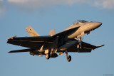 Australian Super Hornet 18 May 10