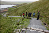 Mickey Maher guiding at Hermaness - Unst