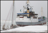 Worlds oldest still active cargo vessel Sydfart wintering in Grönhögen harbour