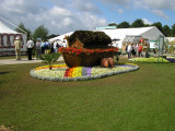 RHS Flower Show Tatton Park 2009