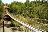 Kukup Island Suspension Bridge