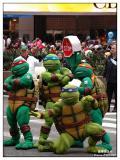 Ninja Turtle_3172.jpg