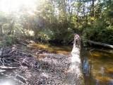 Robert crossing the river