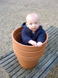 Flower pot little man