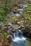 River in the garden