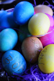 12 Colored eggs 4516