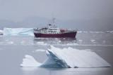 Antarctic Dreams
