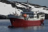Antarctic Nightmare??????