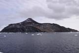 or is it Penguin Island?