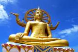 Sunny Meditations