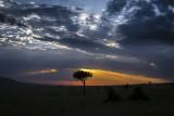 First African Sunset