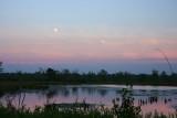 Twilight at the bog