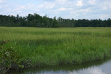 Manumuskin River