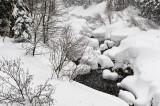 20090215_4964 Alpine Meadows Frozen Brook.jpg