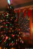 Tree Lights (11539)