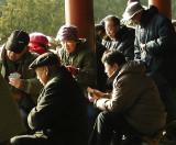 playing cards in 9 below zero Beijing China.jpg