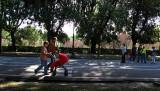 Borghese Gardens: Viale delle Magnolie .. R9442