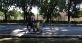 Borghese Gardens: Viale delle Magnolie .. R9443