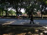 Borghese Gardens: Viale delle Magnolie .. R9445