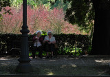 Resting in the shade on the Viale delle Magnolie .. R9446_7