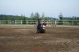 sony a99_horses_6.JPG