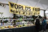 2009 World's Fair