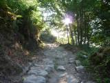 karen's camino de santiago 2010