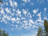 z IMG_0345 Clouds near West Glacier Montana.jpg