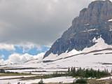 z P1080659 Hikers - Hidden Lake Overlook trail - Logan Pass - Glacier.jpg