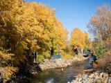 River & autumn colors in Estes Park - IMG_2086