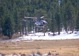 zP1030634 Helicopter takes off in Beaver Meadows.jpg
