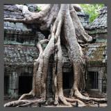 Cambodia- The silent stones