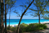 Cabbage Beach- Paradise island