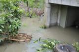 april-2009 flood DSC0995.jpg