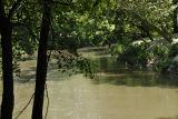 Buffalo Bayou looking upstream