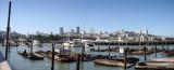 Pier 39 Pano 002.jpg