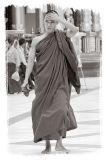 Hot Monk