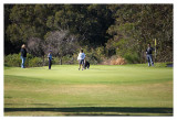 Golf_030.jpg
