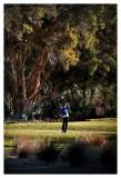 Golf_064.jpg